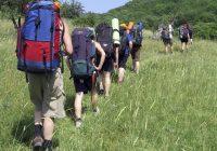 Зарегистрировать туристическую группу в МЧС теперь можно онлайн