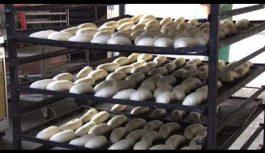 Без малого триста двадцать проб хлеба по самым различным показателям провели специалисты