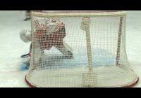 «Ермак» в рамках чемпионата Высшей хоккейной лиги не смог на своем льду одолеть «Ростов»