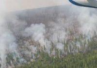 Режим чрезвычайной ситуации ввели в лесах Иркутской области